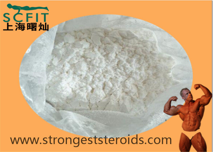 Oral Turinabol White Health Muscle Building Steroid 4-Chlorodehydromethyltestosterone 99% Turinadiol