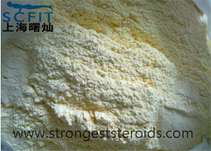 Light Yellow Steriod  Melengestrol acetate 2919-66-6 Anti Estrogen Steroids With Cheap Price